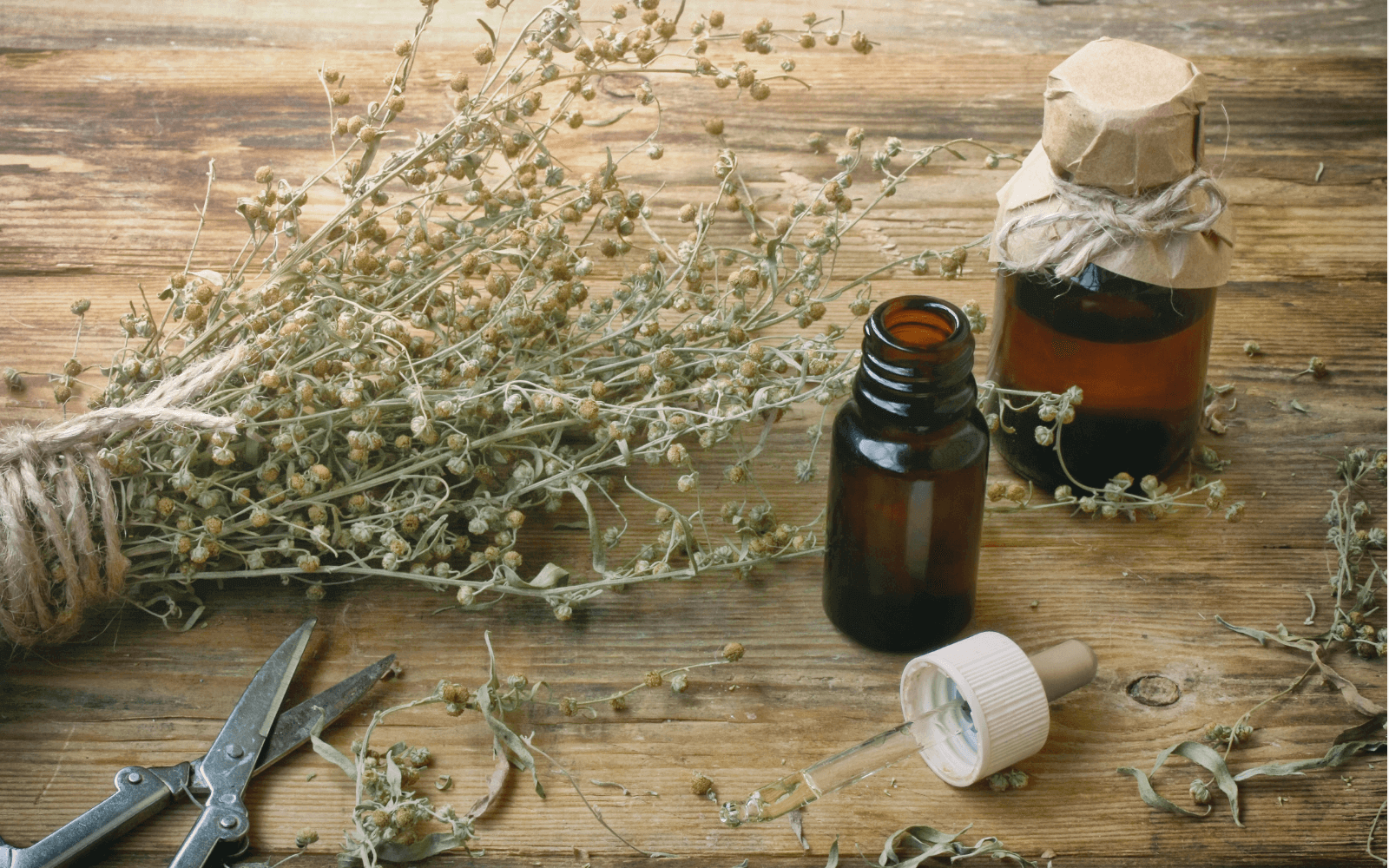Oil Of The Week: African Wormwood