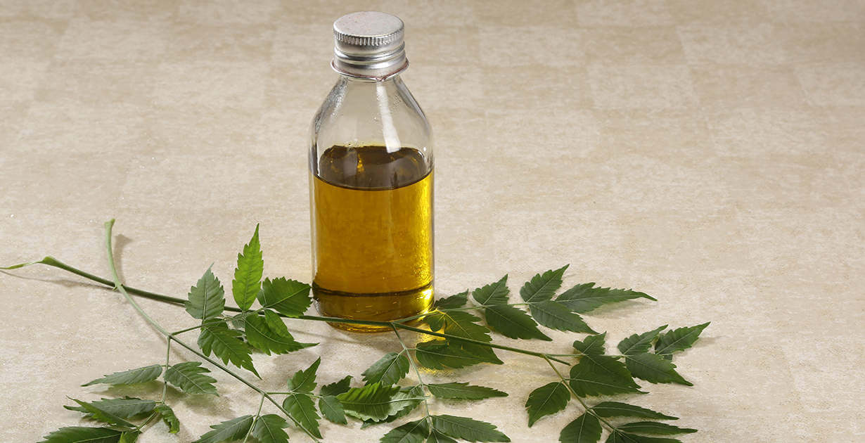 Oil Of The Week: Neem