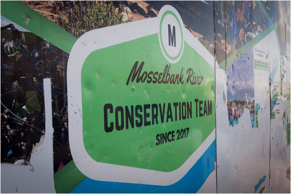 mosselbank river conservation team greenville cape town