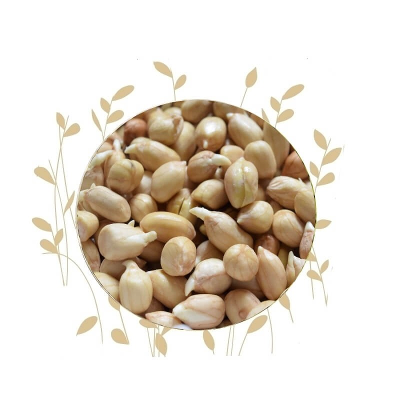 Umuthi Peanuts For Sprouting