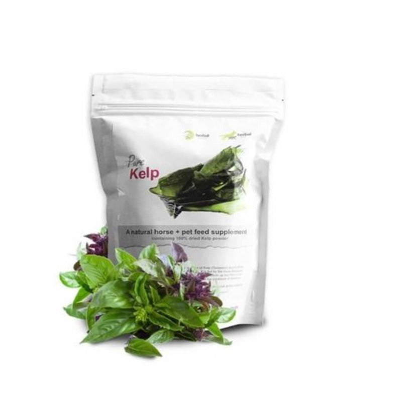 The Herbal Pet 100% Pure Kelp Powder - Essentially Natural