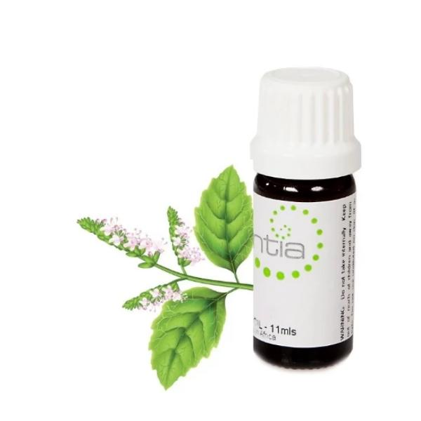 Escentia Patchouli Essential Oil
