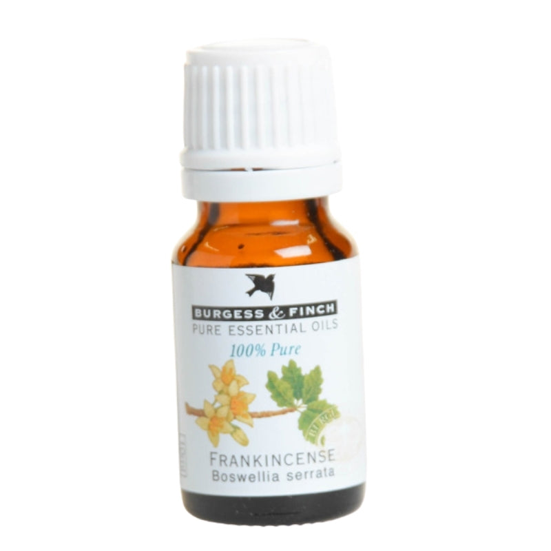 Burgess & Finch Frankincense (Boswellia serrata) Essential Oil