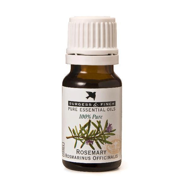 Burgess & Finch Rosemary Essential Oil - Essentially Natural
