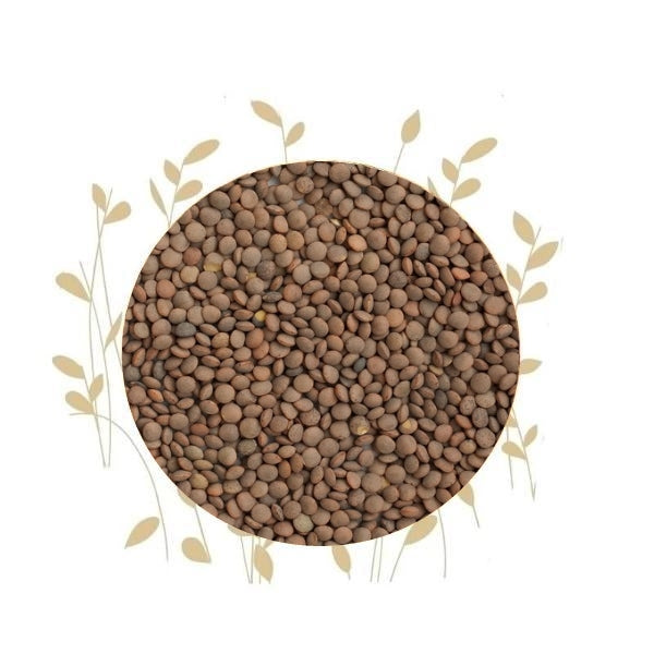 Umuthi Lentils For Sprouting (Brown)