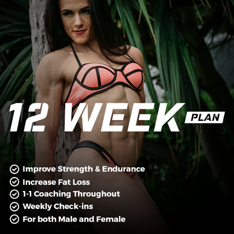 12 Week Custom Training Program