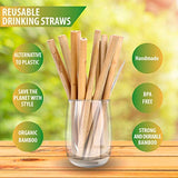Organic Bamboo Straws Reusable – Multiple Packs Eco Friendly Biodegradable Non Plastic Wood Drinking Straw (24 Pack)