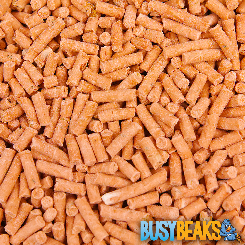 Berry Suet Pellets