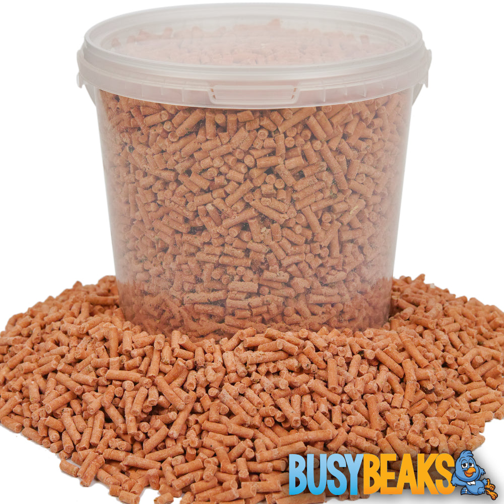 Berry Suet Pellets (Tubs)