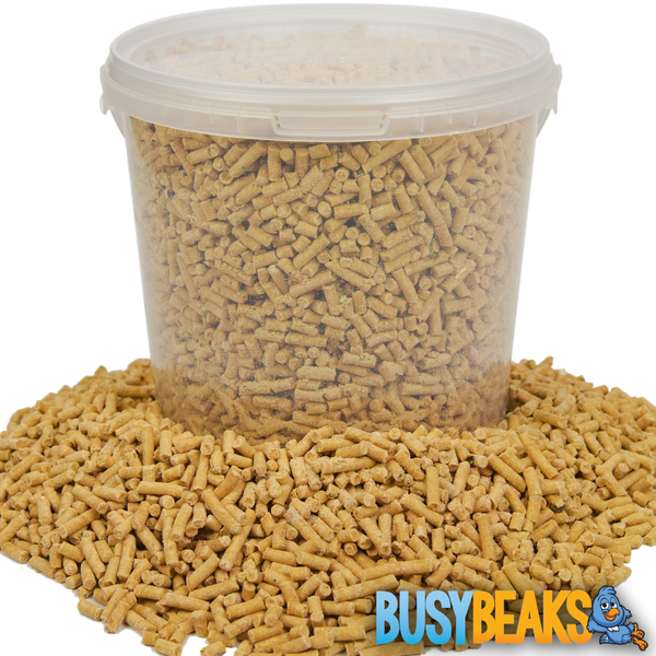 Insect Suet Pellets (Tubs)
