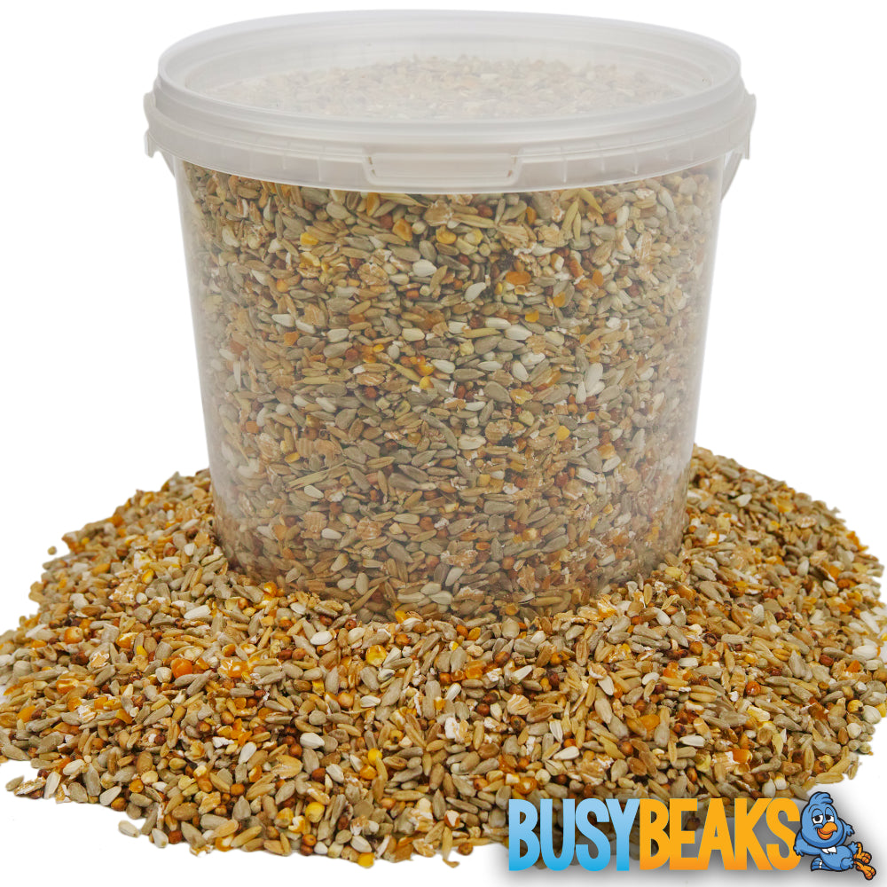 No Mess Seed Mix (Tubs)