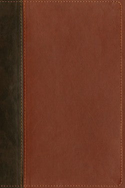 NLT Teen Life Application Study Bible-Brown Leatherlike