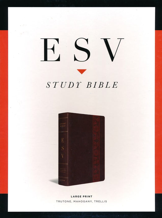 ESV-Study Large Print Bible-Brown With Embossed Flowers