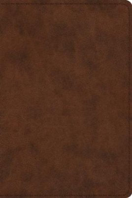 ESV-Study Personal Size Bible-Brown Duo-Tone