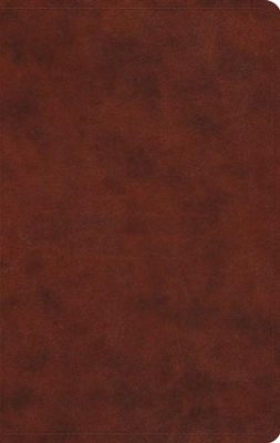 ESV-Large Print Value Thinline Bible-Brown Duo-Tone