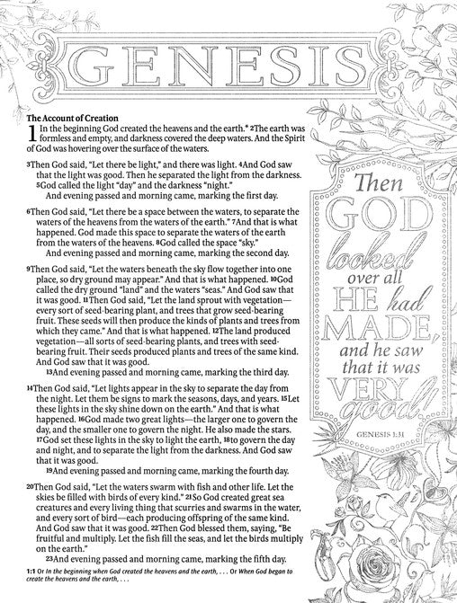Nlt Inspire Bible Deluxe Silky Leatherlike Floral Journaling Coloring