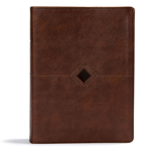 CSB Day By Day Chronological Bible-Brown Leather Touch