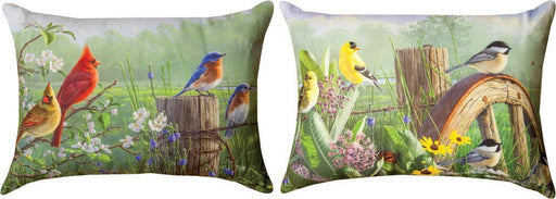 Pillow-Birds/Meadow's Edge