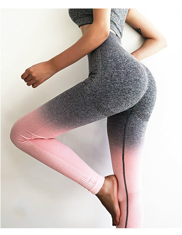 Ombre Seamless Tummy Control Leggings Squatproof - Dancetastic Dancewear