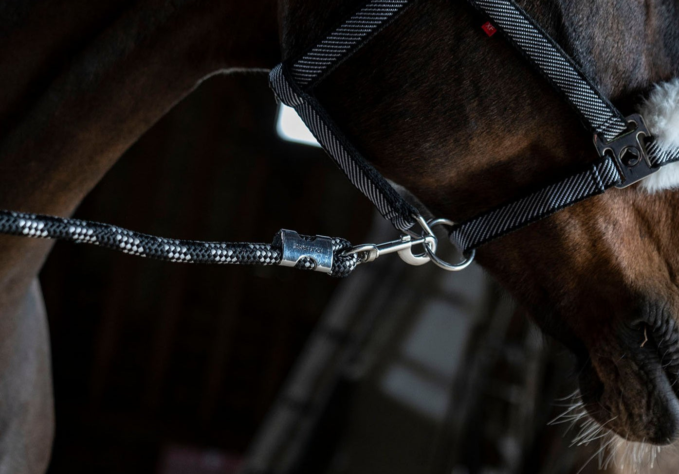 Holy Horse Diagonal Lead Rope