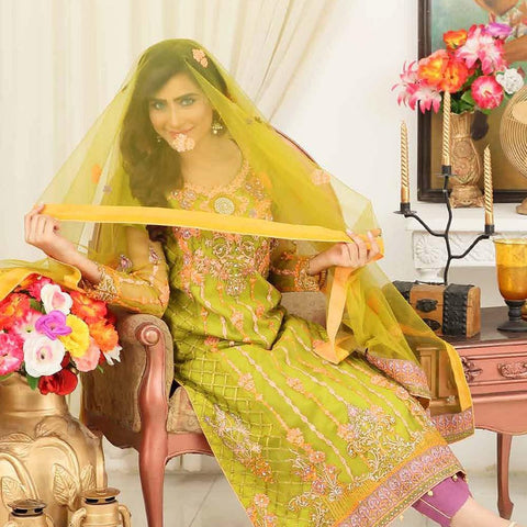 Rang-e-Mehfil Luxury Embroidered Chiffon Suit - PB-79 - test-store-for-chase-value