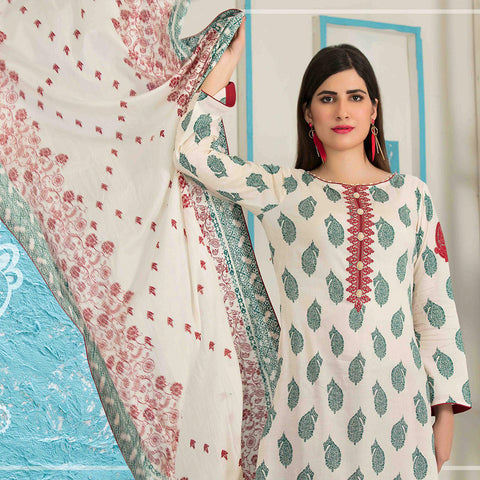 Amna Sohail Bold Summer Embroidered Lawn Suit - 4619 B - test-store-for-chase-value