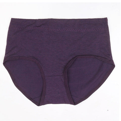 Women's Panty - Purple - test-store-for-chase-value