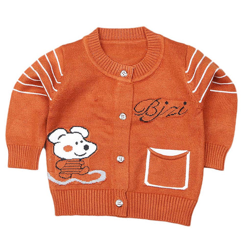 Newborn Boys Full Sleeves Sweater - Brown