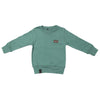 Boys Full Sleeves Rib Jumper 123 - Green
