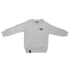 Boys Full Sleeves Rib Jumper 123 - Grey