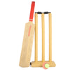 Cricket Bat Cricket Ball With Wicket Set For Kids