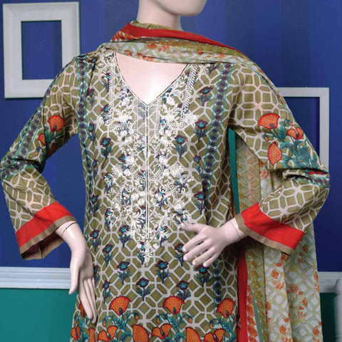 Ayana Embroidered Lawn Suit - 2 B - test-store-for-chase-value