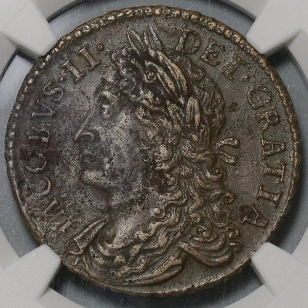 1689 NGC XF 45 James II Ireland 1/2 Crown September Gun Money Coin (19101803C)