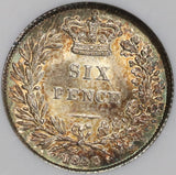 1843 NGC MS 64 Victoria 6 Pence Great Britain Silver Toned Coin (16082801D)
