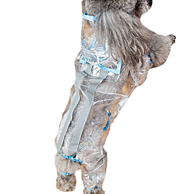 Dog Raincoat With Ears - Blue