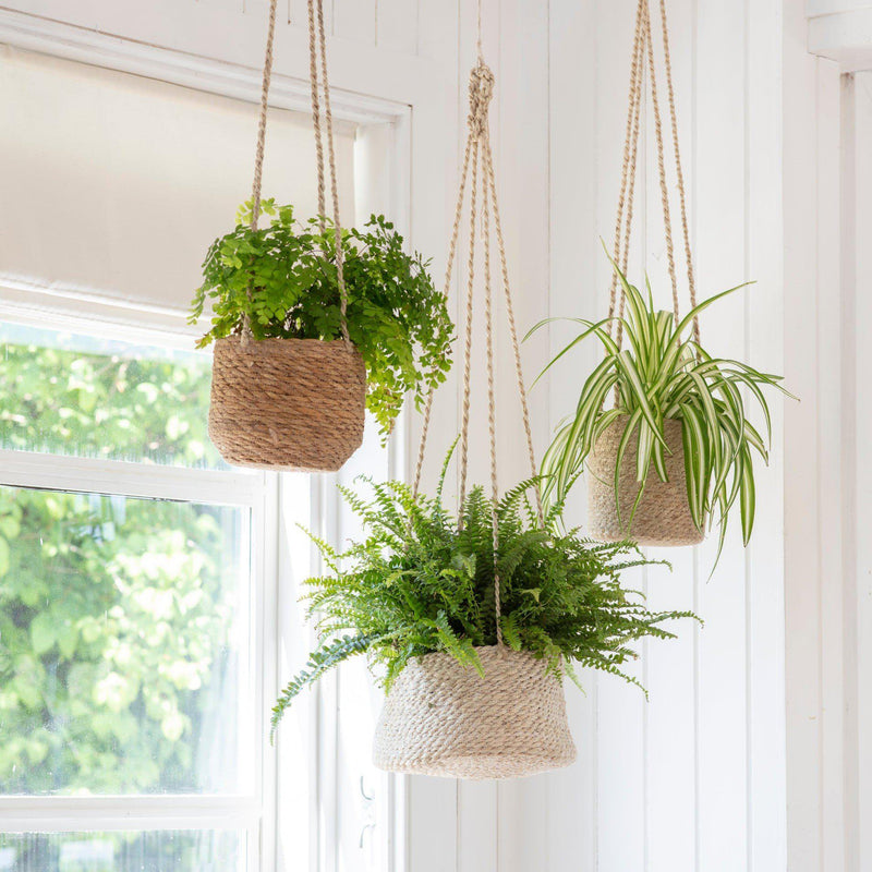 Seagrass Hanging Basket - heart deco