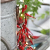 Chilli Pepper led Fairy Lights- heart deco