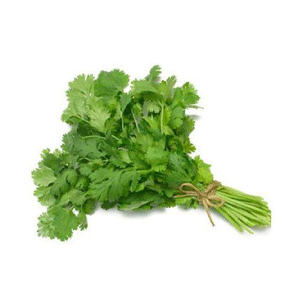 Cilantro, Corriander (Dhanyan) 1 Bundle ہرا دھنیا