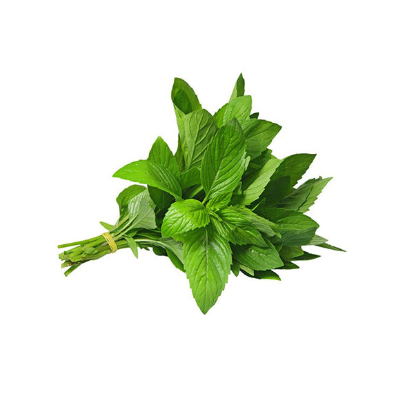 Podina (mint leaves) 01 Bunch  پودینہ