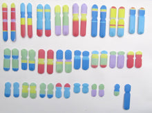 Load image into Gallery viewer, Colourful Chromosomes