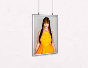 Salon Poster Click Frames, Double-Sided: Woman Front with Long Straight Hair with Orange Highlights - Bound for Style