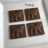 12 BULLDOG Chocolate Solid Square Candy Party Favors