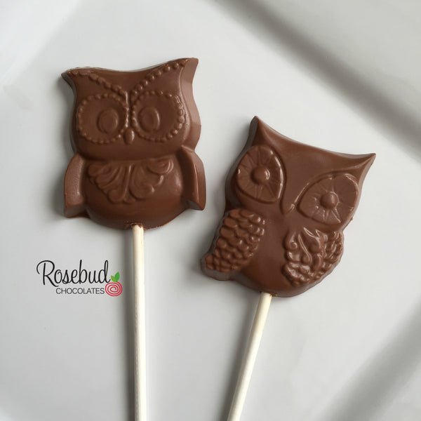 12 OWL Chocolate Lollipops Candy Party Favors