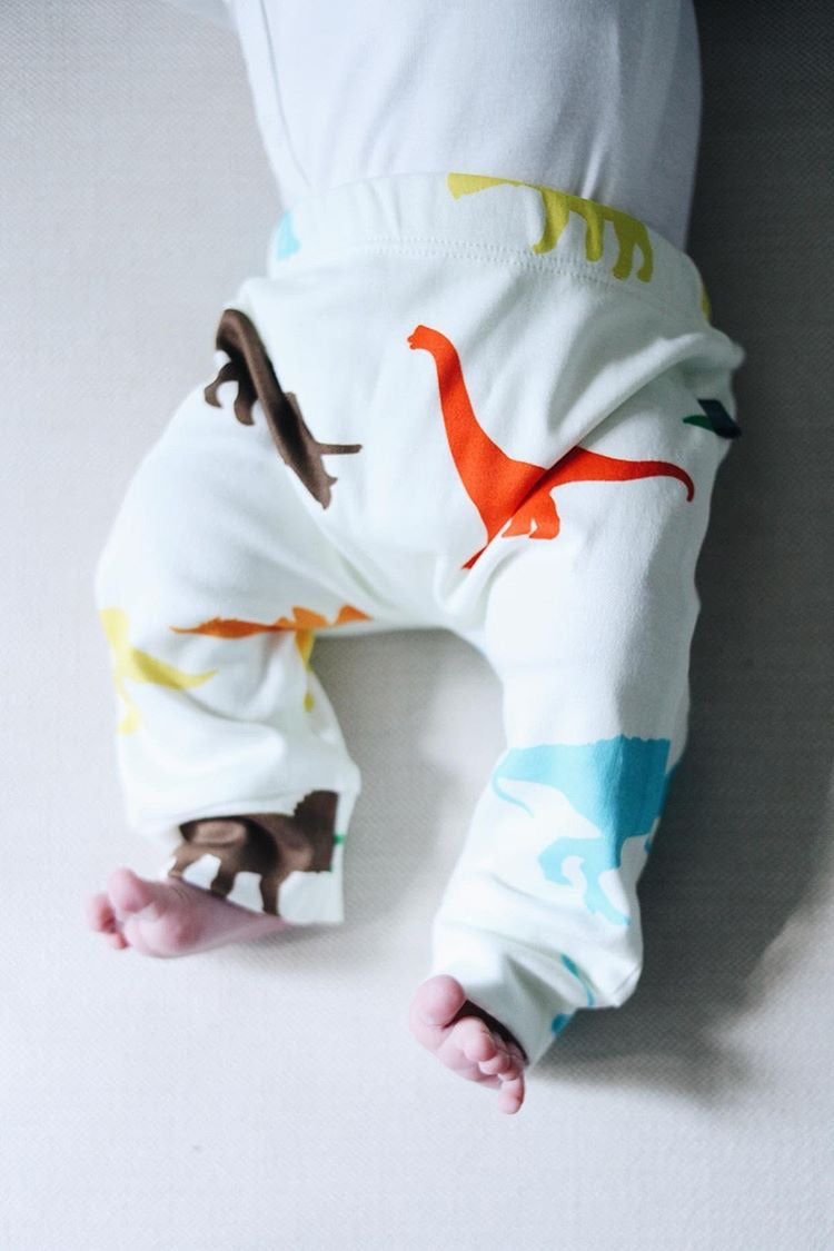 Colorful Dinosaur Gift Set