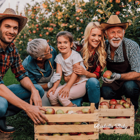 family picking apples together