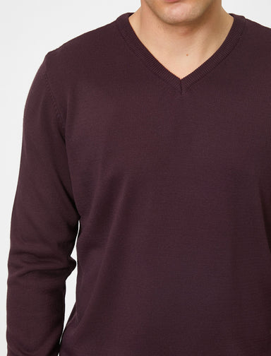 Basic V Neck Sweater in Plum