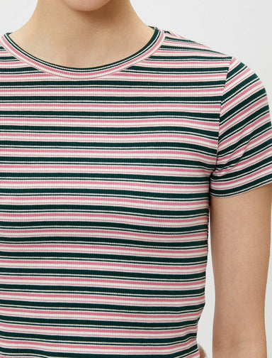Fitted Crop Tshirt in Rose Stripes