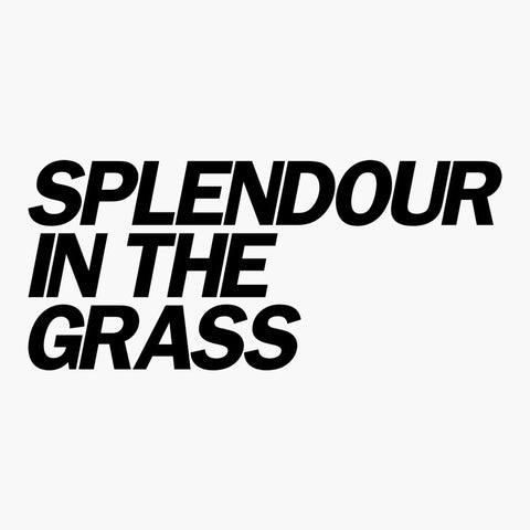 4 x 2019 Splendour In The Grass