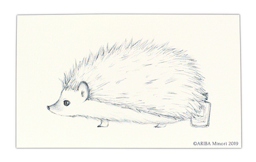 ARIBA Minori Coloring Card - Hedgehog