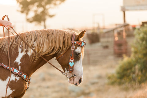 turquoise heart headstall